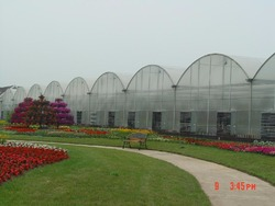 OEM factory greenhouse garden used for hot sale