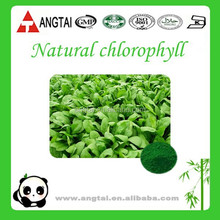 Free Sample Chlorophyll Sodium Copper Chlorophyllin for Food/Extract of Spinach Leaf