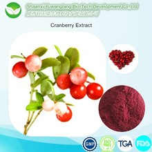 Kosher Halal Certificate cranberry extract with Proanthocyanidins>25%, Resveratrol>10%