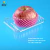 Bio-degradable blister plastic disposable frozen food fruit tray SGL-1410