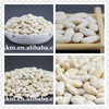 Medium Size White Kidney Beans Common Cultivation Type Beans and Bulk Packaging all types of red Kidneys beans,