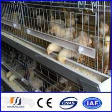 New !!! poultry cage / chicken cage for India