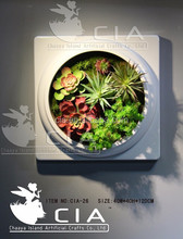 Fashion Wall Mounted Artificial Succulent Plants Hanging Picture for Interior Wall Ornament