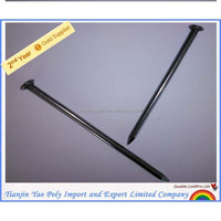 plastic cap stainless steel nail made in China