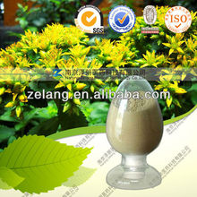 Notoginseng Flower plant extract