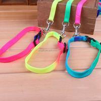 retractable decorative dog leashes/pet leashes