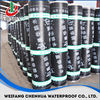 SBS/APP waterproofing membranes for construction building