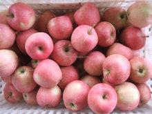 2015 fresh bulk red star apple exporter from china