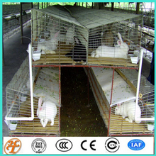 3 tiers 12 cells rabbit breed farming cage for mother and child rabbit