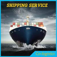 shipping company in China shipping to USA NEW YORK wholesale - Nika