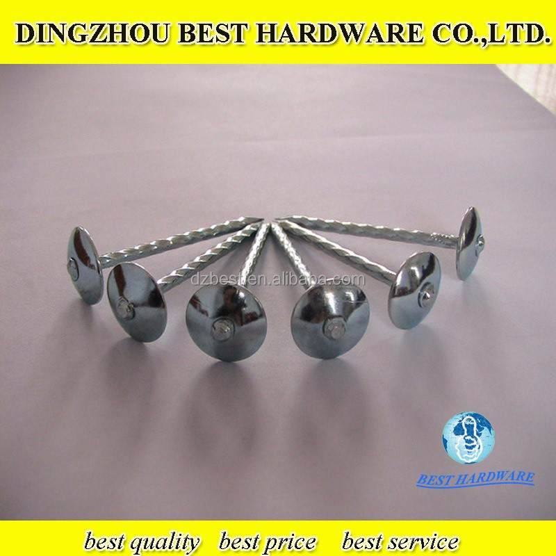 Umbrella head roofing nails with rubber washer buy for Roof nails dripping