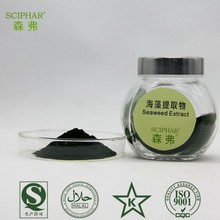 Supply Pure and Natural Seaweed extract with Best Price