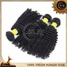 100% unprocessed raw virgin brazilian hair short curly hair brazilian weave