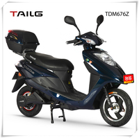 China's strong steel frame 800W 60V men/women two wheel sports electric motorbike for sale
