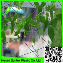 plant support netting&extruded pea and bean net&vegetable supporting trellis net