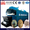 China manufasture offer Horizontal chain furnace DZL series wood fired hot water boiler price