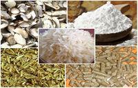 White Rice, Parboiled Rice, Jasmine Rice