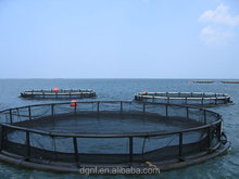Circle floating aquaculture equipment system raibow trout fish farming cages