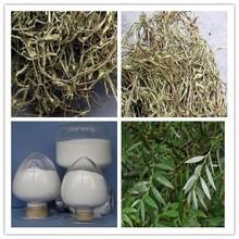 CAS: 84082-82-6 salicin extract form Salix alba