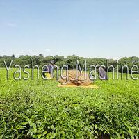 Trade Assurance two men portable tea picking machine vendor of world-famous tea estates