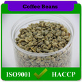 suave sabor a granel verde granos de café arábica