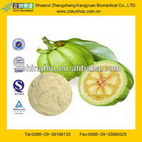 GMP Certified Manufacturer Supply Garcinia Cambogia Extract 80% Hydroxycitric Acid