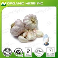 pure natural garlic extract powder 3% allicin powder for human