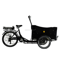 cargo tricycle china/electric three wheel cargo bike for sale/women trike Cargo Bike Manufacturers