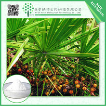 High quality herb extract powder factory saw palmetto extract 25%