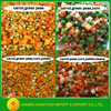 export canned vegetables in water Chinese fresh canned vegetables