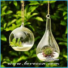 2015 Christmas decorative hanging glass terrarium & 100mm hanging round glass vase & round glass air plant ball