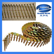 Coil Nails With Flat Head Common Coil Nails Factory