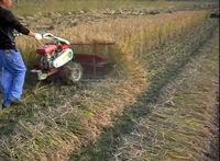 Good priced quality guaranteed new design/mini rice crop cutting machine