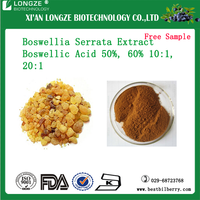 100% natural boswellia serrata extract powder boswellia carterii extract P.E 60% Boswellic Acid 50%-60%