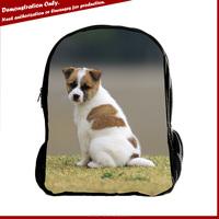Manufacturer hiking custom animals rucksack backpack school bags