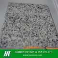 G640 Dongshi Blanco granito gris serena