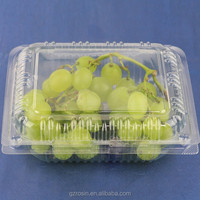 Clear PET Plastic Food Container