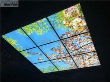 led sky ceiling panel blossom image