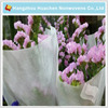 New Technology Eco-friendly Direct Factory Non-woven Fabric for Flower Wrap Sheet and Roll