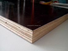 Eucalyptus film faced plywood used as consturction materials