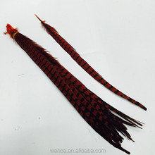 Dyed Pheasant Feather For Sale Cheap