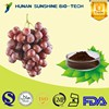 Nutritional Supplements Natural Antioxidant Grape Seed Extract for Capsule Proanthocyanidins, Polyphenol