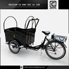 Hot 2015! family BRI-C01 e rickshaw for india market