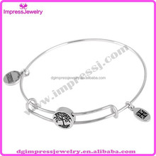 IJD0416 custom alex and ani slide the tree of life round charm stainless steel adjustable wire bangle