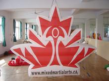 New design Inflatable Hanging Lighting Logo