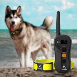 2016 Hot Remote Waterproof Dog Collar Pet Training Goods