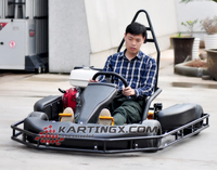 1 Seat Cheap Racing Go Kart/Karting for Sale