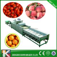 Apple Grading Machine| Apple weight Grading Machine| Apple Weight Sorting Machine