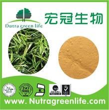 Natural Organic Green Tea Extract Bulk Powder Tea Polyphenols 98% / Black Tea Extract / White Tea Extract Powder