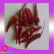 Hot sale dried chili peppers exporter(good quality,cheap price)